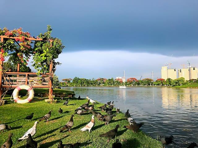 家门口的公园