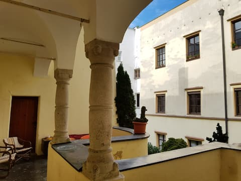 Ατομικό παλιό διαμέρισμα στο κέντρο του Passau