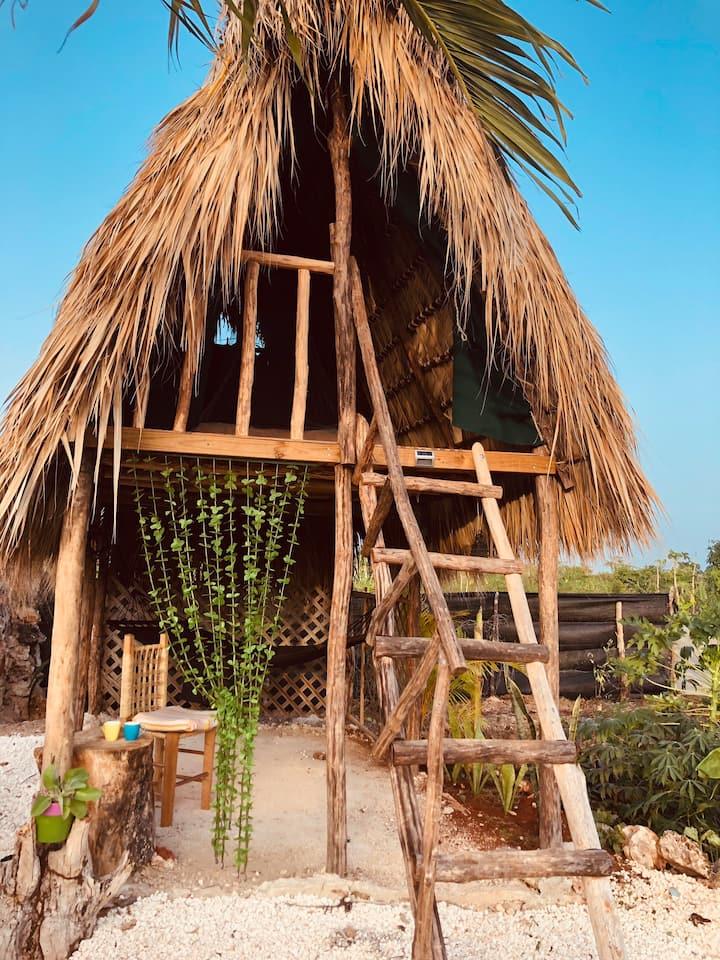 Tree house- EcoLodge- Cabaña 2 personas- Mitín