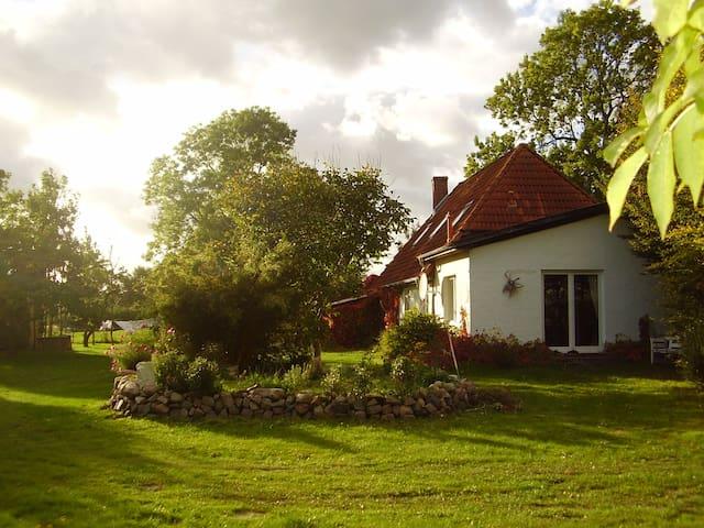 Ferienwohnung - Splietsdorf - Appartement