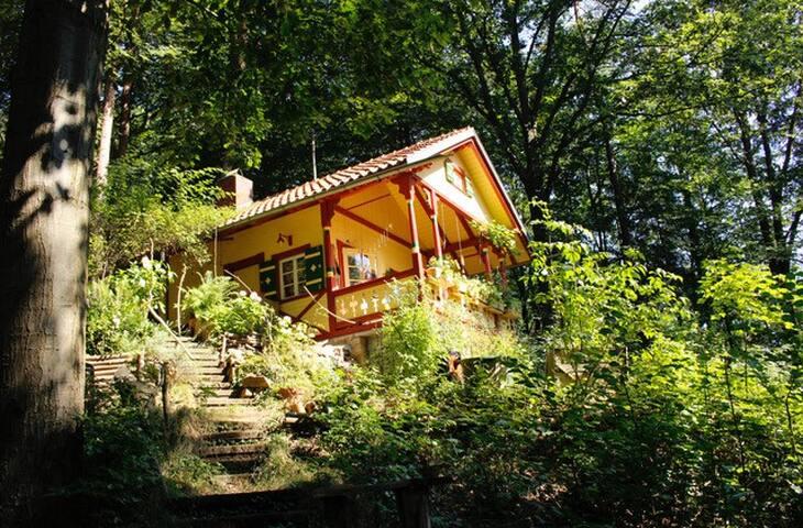 Waldhütte im Spessart