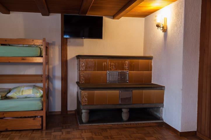 Trittofen Wohnzimmer