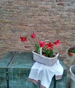 B&B e terrazza a Palazzo D'Agostino - Pollutri