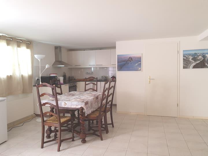New apartment in a villa in Geneva