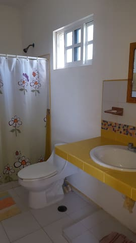 Los dos baños, planta alta y planta baja son iguales