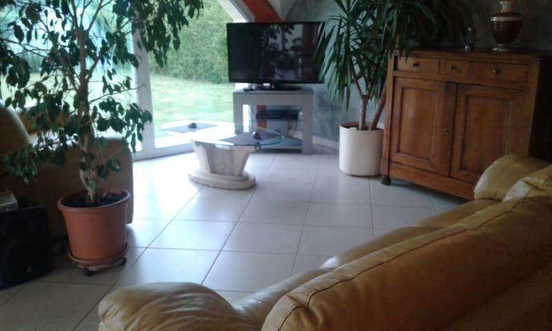 salon cuir , écran TV plat
