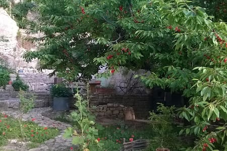Rare un jardin en plein village - Saint-Martin-de-Castillon - 一軒家