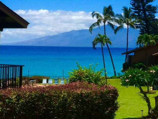 Private ocean view corner unit. - Napili-Honokowai