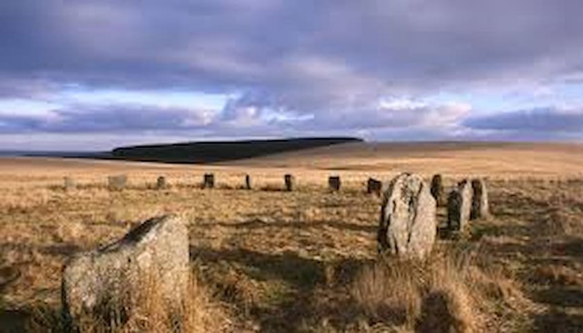 We are within walking distance of Dartmoor National Park