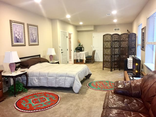 Private walk-out basement / new bathroom - Castle Rock