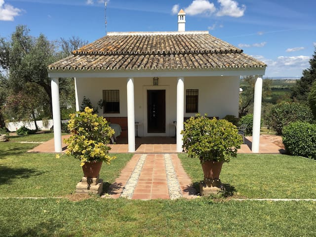Detached house 20 km Sevilla