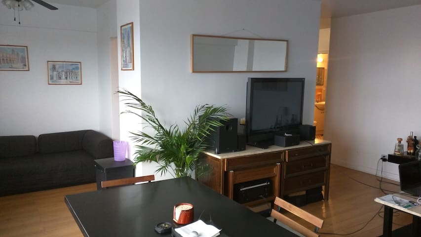 Spacious Waterfront One-bedroom in Pointe Claire - Montreal - Apartmen