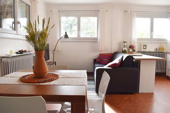 Appartement refait à neuf, accès jardin et piscine
