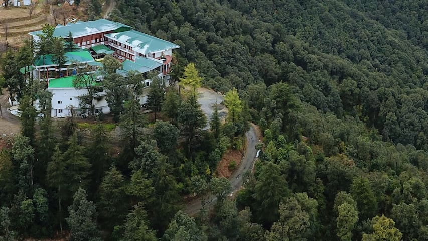 Eco-touristic & luxurious hill view room in Chail