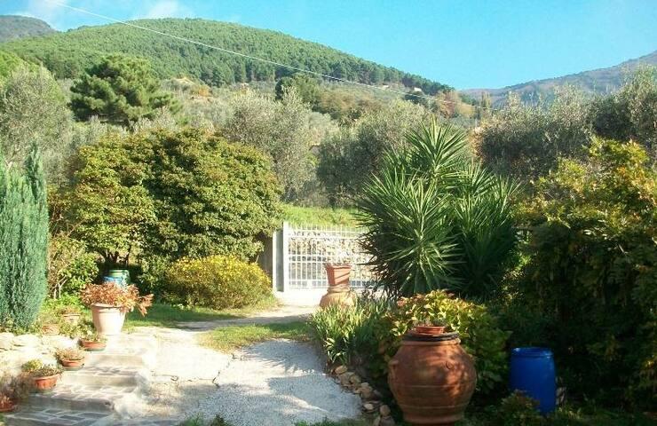 Pretty chalet with wonderful landscape