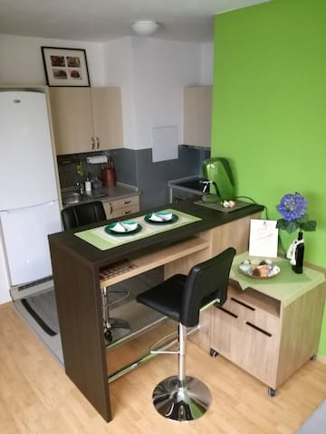 Brand new 1-bedroom apartment w/parking spot