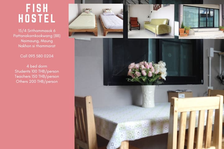 Fish Hostel (shared room for 1 - 4 people)