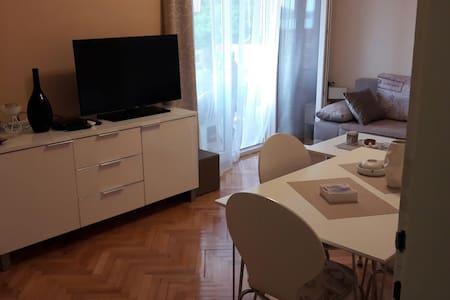Seawiev apartment SAVE KOVACEVICA 38 HERCEG NOVI - Herceg - Novi - 公寓