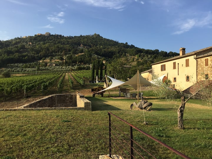 Agriturismo immerso nelle vigne - Cappella