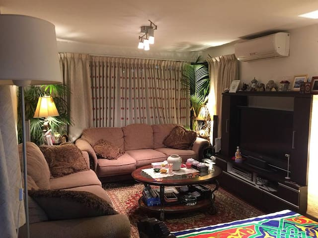 Living with Family in great place! - Minato- ku  港区 - Apartment
