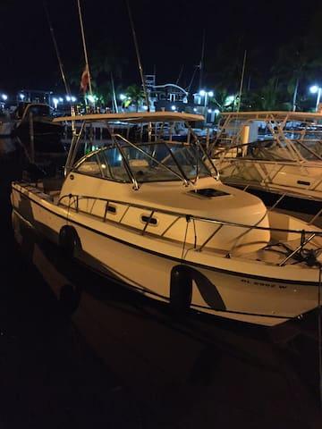 Fabuloso bote para 4 personas! - Boca Chica - Casa