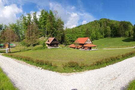 Lovely Cottage Ela at Marjeta's Estate, Idrija