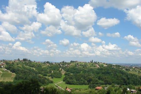 Vineyard Villas Varazdin 2 House's for Group's