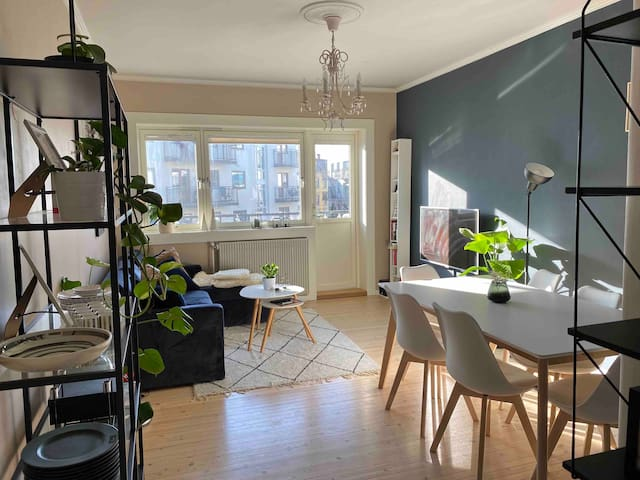 Charming Scandinavian flat in Central Oslo
