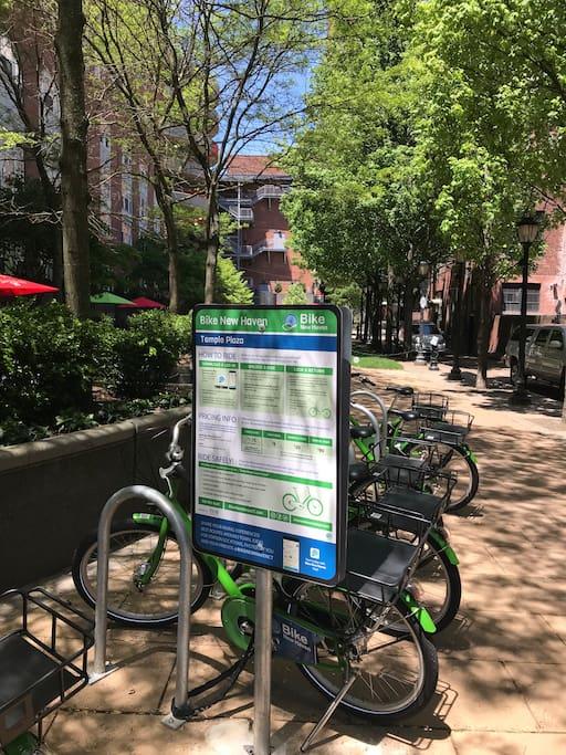 Temple Street bike rentals-Bike New Haven