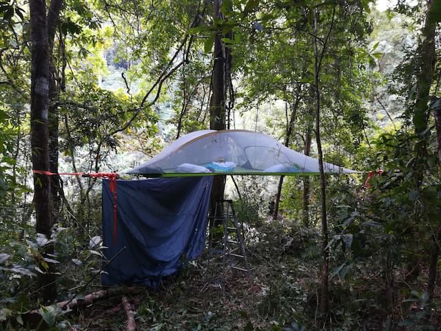 Jungle Tree Tent - Cerro Azul
