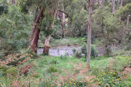 Cosy Cabin By The Yarra River - Millgrove - Hus