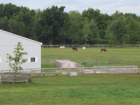 Peaceful Retreat on Horse Farm near Alliston