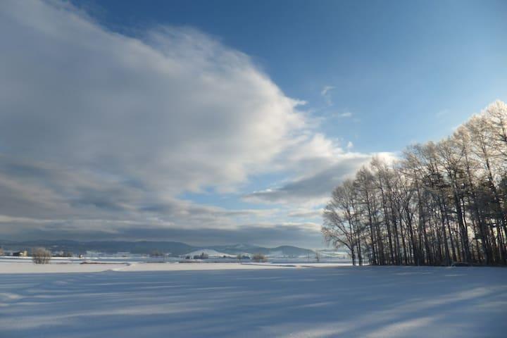 Scenery nearby in winter season.