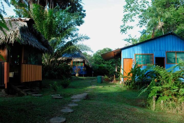 Friar's Cabin #02 - Alto del Aguila