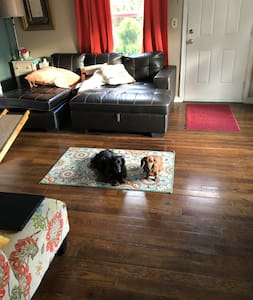 Small dog friendly cottage in South Seattle.