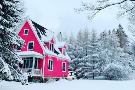 Welcome to the Pink Snow Palace!