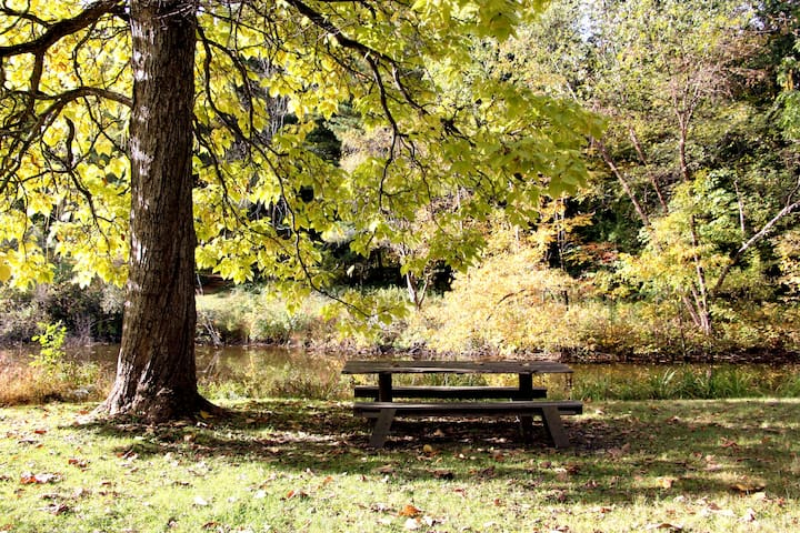 Our picnic table by the pond.