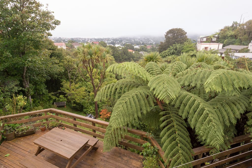Vege garden and bush views