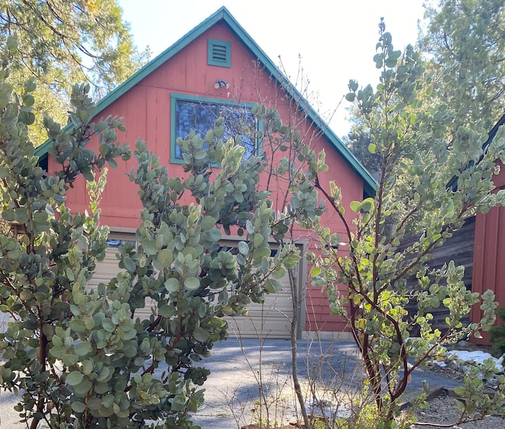 "Loft on the ""Deer Trail"" in Beautiful Idyllwild"