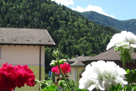 Home Aurora2