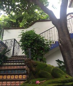 Casa Conti Bacocho Appartments - Пуэрто-Эскондидо