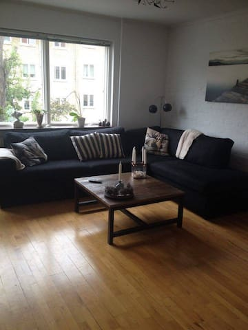 Big 1 bedroom apartment. Just above Copenhagen.