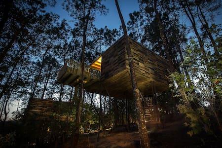 Cabaña en el árbol (Cabaña Barquiña) - Outes