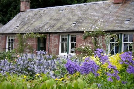 Littleton of Airlie Farm Cottages - Kirriemuir