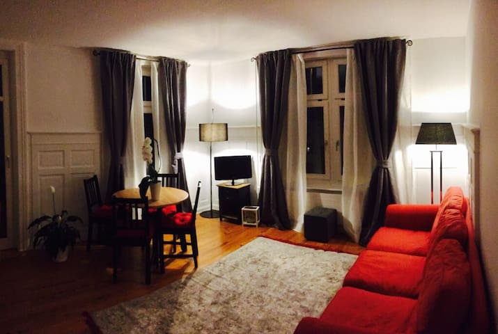 Elegant and cozy appartment in center of Meilen