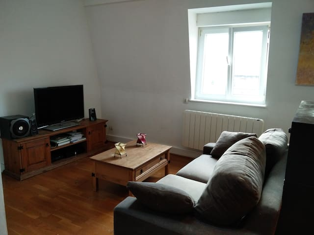 Appartement T2  FLAT in LILLE up to 4 persons - Lille - Appartement