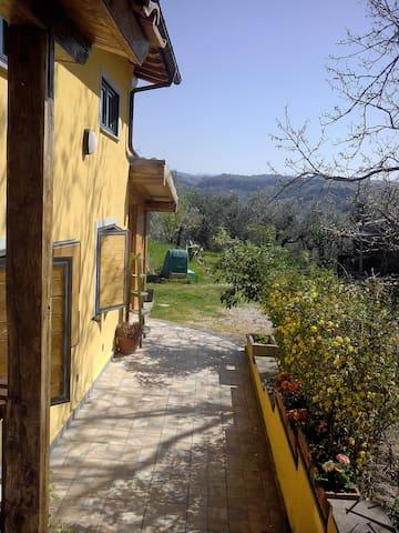 Casa vacanze - Montopoli di Sabina - Pis