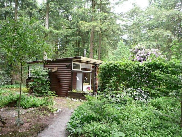Fijn huisje aan de rand van het bos