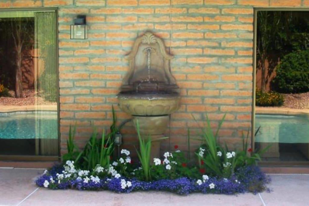 Backyard fountain reflecting swimming pool