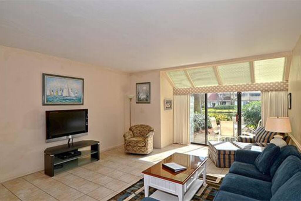 Flat Panel TV in Living Room